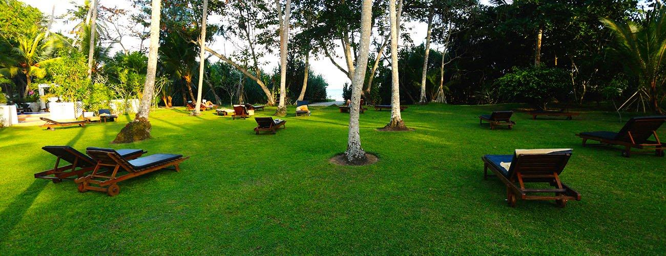 Angebote - Surya Lanka Ayurveda Resort