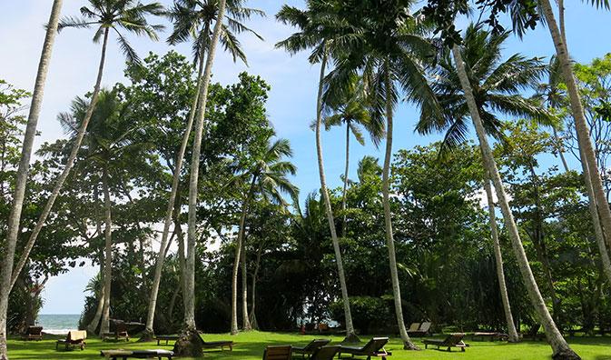 Ayurveda ferien im Surya Lanka Ayurveda Resort