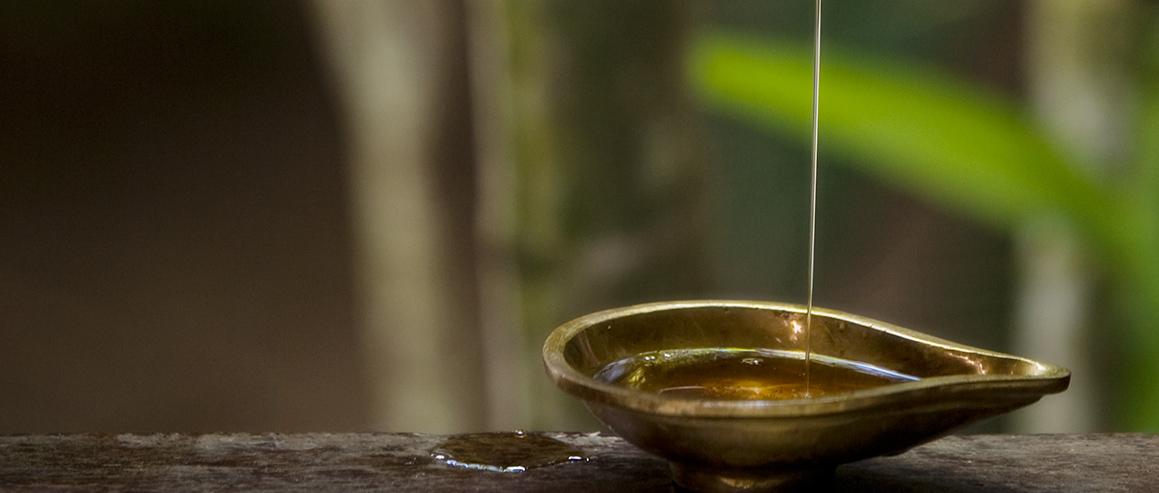 Ayurveda Öle im Surya Lanka Ayurveda Kurzentrum