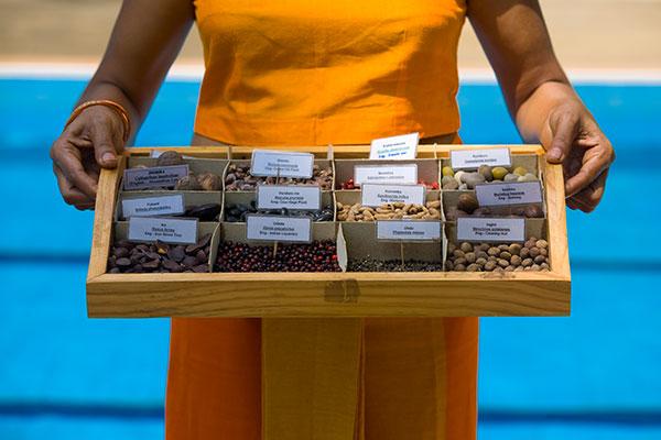 Ayurvedische Medizin im Surya Lanka Ayurveda Resort