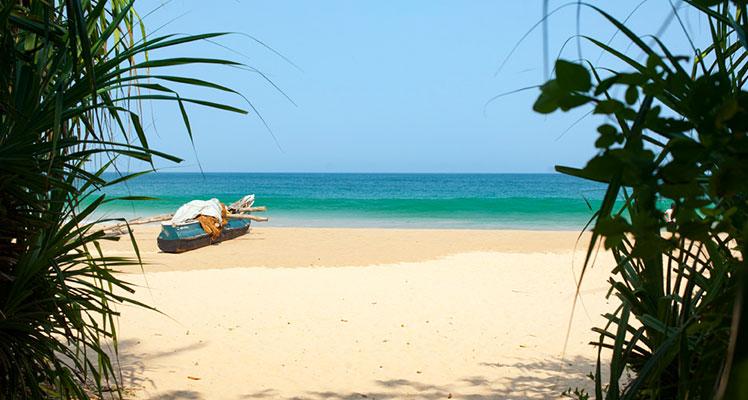 Der perfekte Ort für ein Ayurveda-Resort in Sri Lanka
