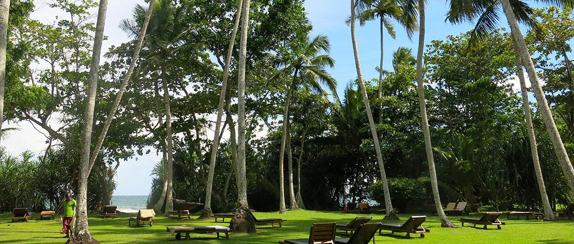 Tarif im Surya Lanka Ayurveda Resort im Sri Lanka